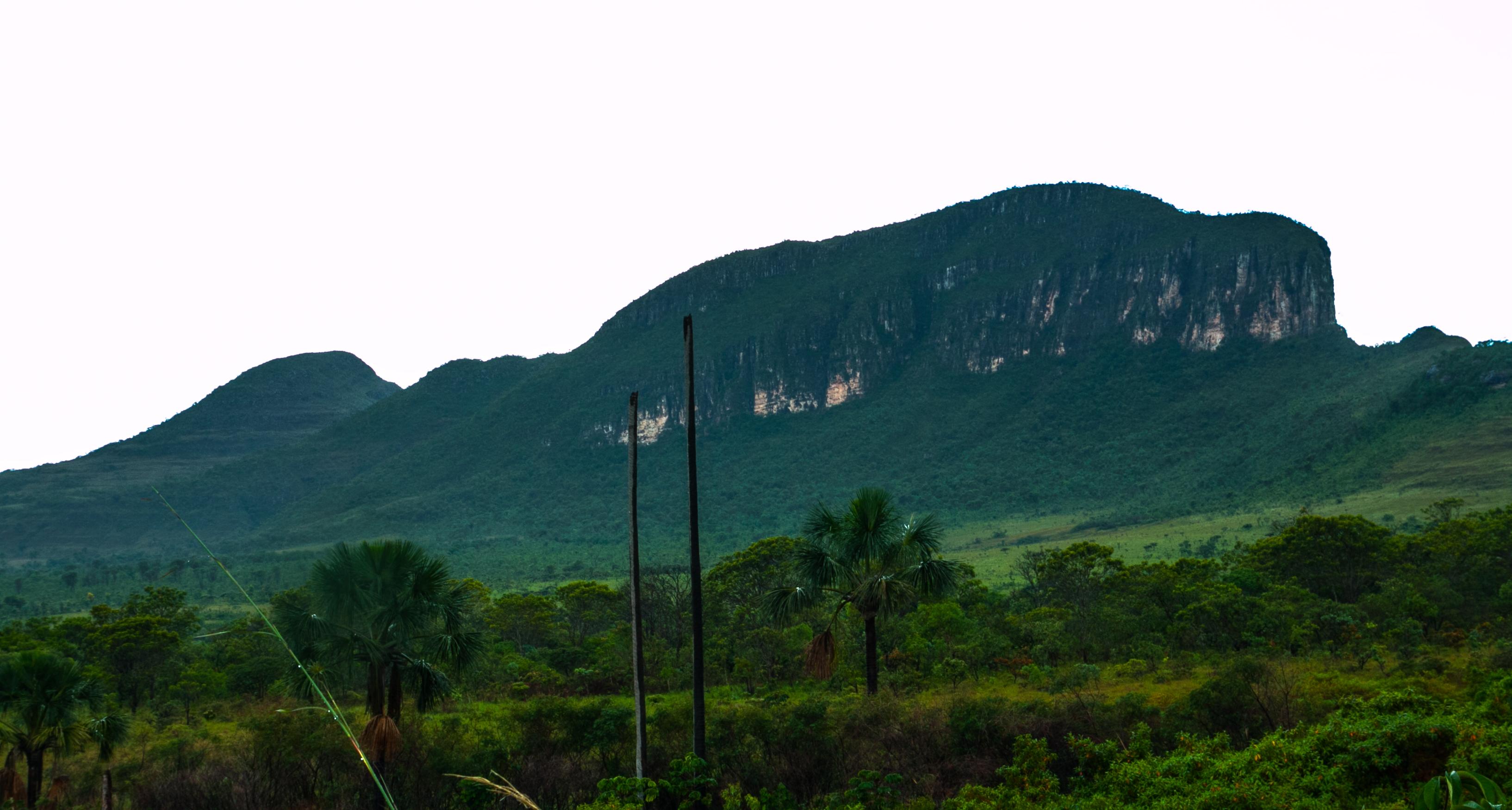 Montanha da Baleia