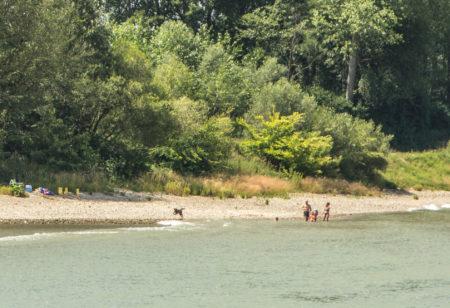 A beira do Rio Danúbio
