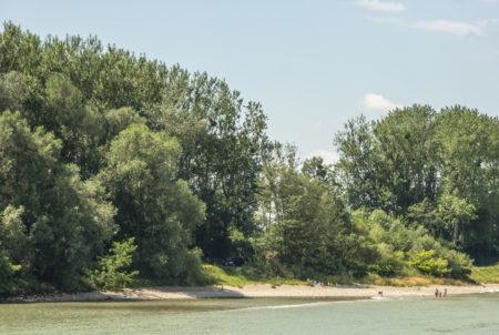 Famílias se divertindo no Rio Danúbio